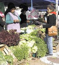 Página/12 :: cash | Nuevos modelos alimentarios y agropecuarios | Scoop.it