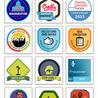 Digital Badges in Elearning