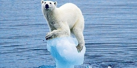 100% clean - the climate petition to save the world | Take action for a safer climate | Scoop.it