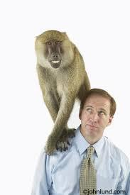 Management Time: Who's Got the Monkey? | Coaching Leaders | Scoop.it
