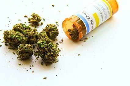 Marijuana legale dà i brividi alle multinazionali del farmaco | Medic | Scoop.it