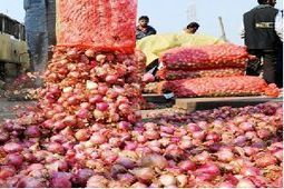 Onion prices 80% higher than last year - Times of India | india inflation | Scoop.it
