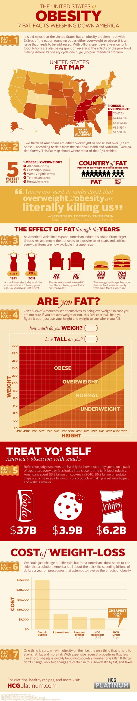 The United States of Obesity Infographic | Nutrition topics | Scoop.it