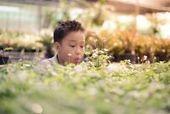 Développement durable | Les inégalités | Scoop.it
