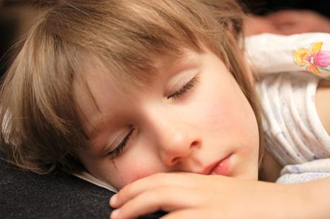 Dormir es el precio que paga el cerebro por aprender | Com.En.Zar - TV y Entretenimiento | Scoop.it