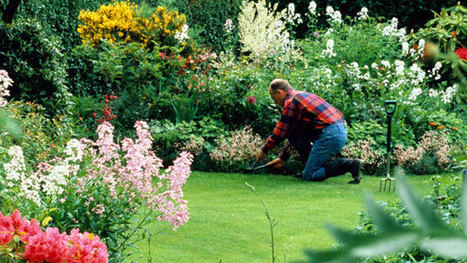 13 Things Your Landscaper Won't Tell You | Gardening | Scoop.it