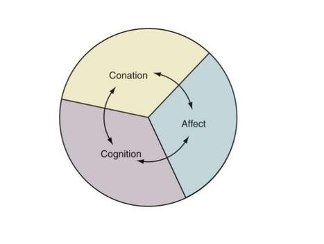 Attitude in Consumer Behavior | Modern Management Techniques | Scoop.it