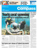 Eco-tourism could help protect local nesting turtle population :: cayCompass.com   Animal Cruelty   Scoop.it