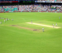 Sydney Cricket Ground pitch to assist both India, Oz: Curator - Zee News | Cricket - fun and analysis | Scoop.it