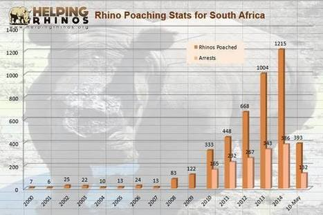 Helping Rhinos393 Rhinos Poached in First 120 Days of 2015 | GarryRogers NatCon News | Scoop.it