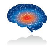 Douleur nociceptive : agir vite ? - ActuKine.com | Douleur(s) et kinésithérapie | Scoop.it