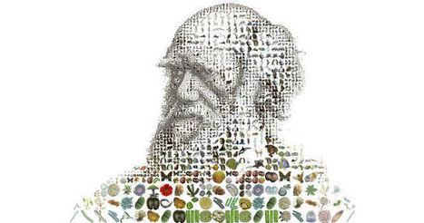 ¿Cómo sobrevivir al darwinismo digital?   Orientar   Scoop.it