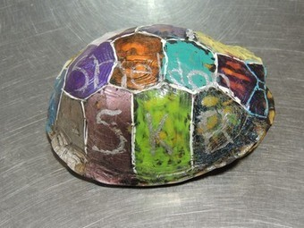 Wildlife center rescues a turtle covered in graffiti | Nature Animals humankind | Scoop.it