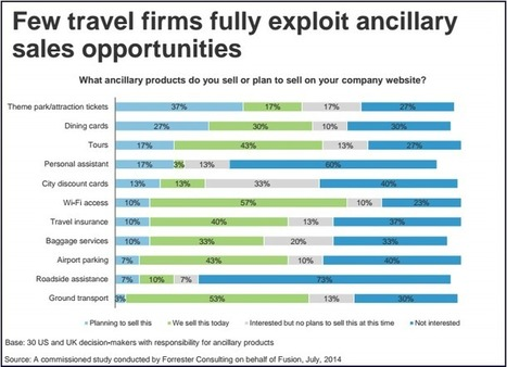 Travel: How to customize ancillaries for enhanced customer satisfaction | Digital Presentations | Scoop.it