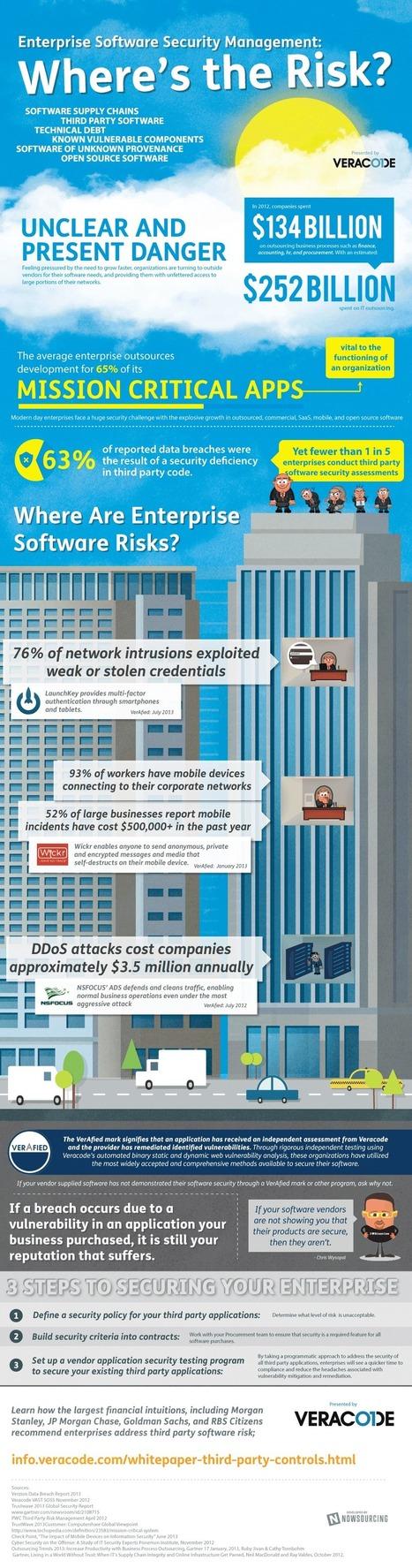How Risky Is Enterprise Software? [INFOGRAPHIC] | Bedrooms Decorator in Delhi | Scoop.it
