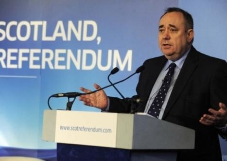 Jennifer Dempsie: Online there's plenty of stupid to go around - News - Scotsman.com | Referendum 2014 | Scoop.it