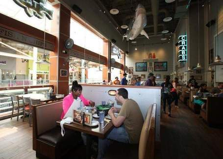 New on the Dining Scene: Joe's Crab Shack in West Nyack | Restaurants & Food Guide | Scoop.it