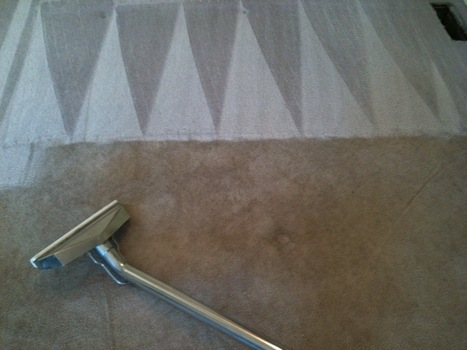 johnhhamilton A lucrative offer within the carpet cleaning   carpet cleaning seattle   Scoop.it