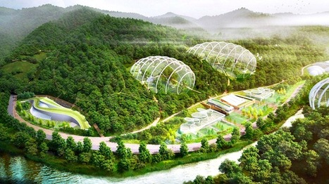 South Korea wants to put ENDANGERED species in gigantic bubbles | The Architecture of the City | Scoop.it