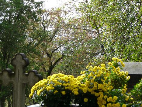 L'automne fleuri dans le cimetière du Père-Lachaise | Les colocs du jardin | Scoop.it