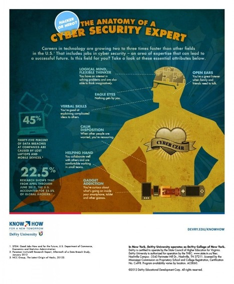 Infographic: Anatomy of a Cyber Security Expert   Security Infographics   Scoop.it