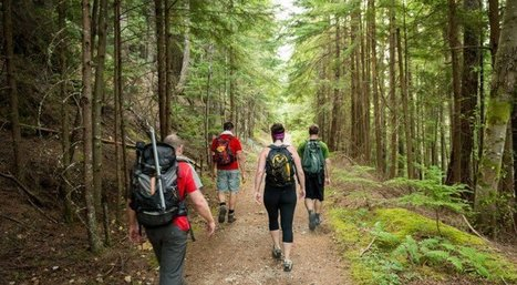 Doctors Explain How Hiking Actually Changes Our Brains | Scouting Adventures | Scoop.it