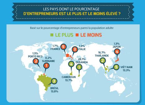 «La France fait partie des pays ayant le moins d'entrepreneurs en pourcentage de la population» | CCI du Tarn | Scoop.it