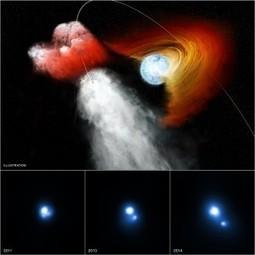 Com'è il vento stellare di una pulsar | Fisica - Physics | Scoop.it