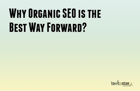 Why Organic SEO is the besy way forward? | LOWCOSTSEO.CO | Scoop.it