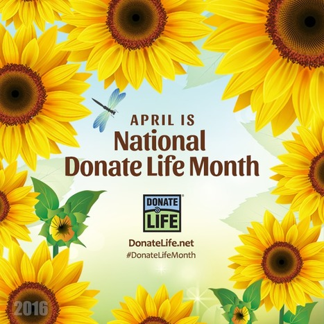 April is National #DonateLifeMonth in the USA with multiple planned events and a social media campaign | Organ Donation & Transplant Matters | Scoop.it