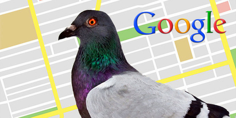 Google Updates Local Search Algorithm with Pigeon Update! | SEO | Scoop.it