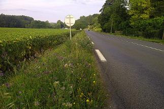 Biodiversité : quatre départements distingués pour leur action sur les routes | Nature en ville et Biodiversité | Scoop.it