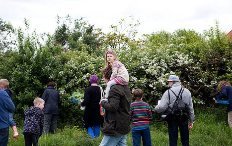 The hedgerows are full of surprises: a get-together in pictures | UK Food | Scoop.it
