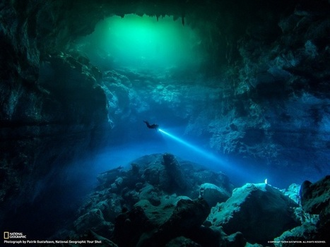 Pics: Cenote Diving In Tulum | Real estate | Scoop.it