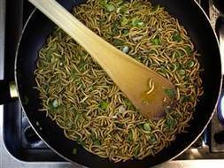 Mealworms: They're not just for breakfast anymore...   Entomophagy: Edible Insects and the Future of Food   Scoop.it