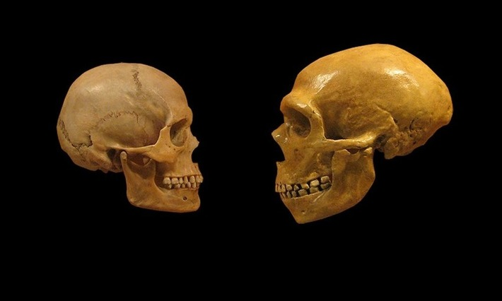 Schizophrenia Emerged After Humans Diverged From Neanderthals | Heritage Daily | Kiosque du monde : A la une | Scoop.it