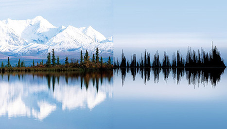 Anna Marinenko connects nature and noise for sound form wave - designboom | architecture & design magazine | DESARTSONNANTS - CRÉATION SONORE ET ENVIRONNEMENT - ENVIRONMENTAL SOUND ART - PAYSAGES ET ECOLOGIE SONORE | Scoop.it