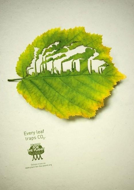Cut Leaf Illustrations for 'Plant for the Planet' | BASIC VOWELS | Scoop.it