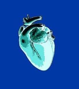 Des doses élevées d'antidouleurs font augmenter les risques d'attaque cardiaque | Toxique, soyons vigilant ! | Scoop.it
