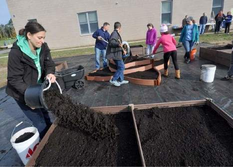 Westerly, Rhode Island Middle School garden teaches bountiful lesson | Homework Helpers | Scoop.it
