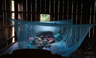 Buy more and better bednets for the money, says new report | KochAPGeography | Scoop.it