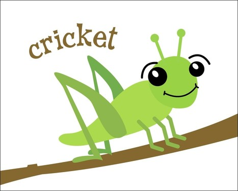 How To Get Rid Of Crickets? DIY Home Remedies for Crickets | Health Tips by HNBT healthnbodytips-com | Scoop.it