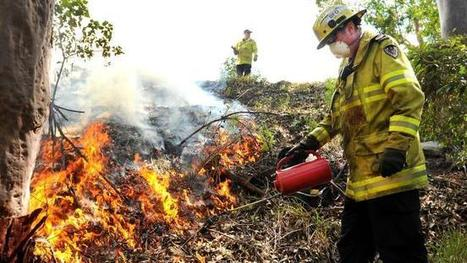 HAZARD reduction will take place in Wahroonga and Lane Cove today. - The Daily Telegraph | NPWS fire management | Scoop.it