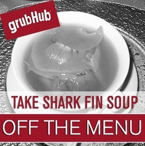 Tell GrubHub to Take Shark Fins Off the Menu! | Oceana | All about water, the oceans, environmental issues | Scoop.it