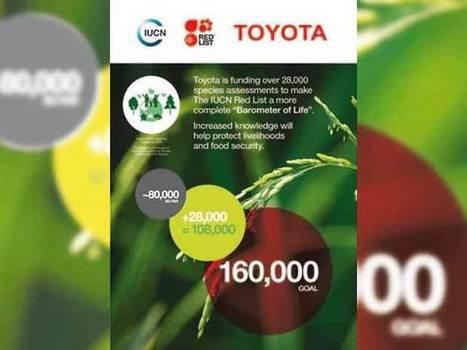 Toyota s'engage en faveur de la protection de la biodiversité   RSEco-systémique   Scoop.it