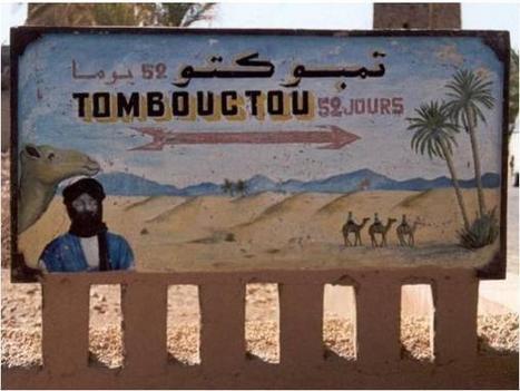 Tombouctou : les rizières maudites - Malijet - Actualité malienne   Diprofav cooperative agricole   Scoop.it