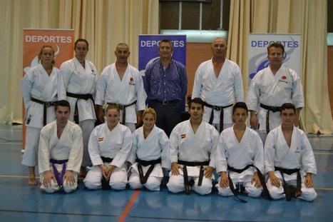 Un total de 170 alumnos de las escuelas de artes marciales en acción - Andalucía Información   artes marciales   Scoop.it