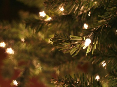 Woman Has Used the Same Christmas Tree Every Year Since 1928 | Financing Sustainable Community Development | Scoop.it