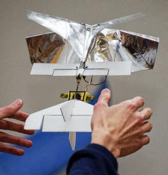 Pays-Bas.  Le sosie robotique d'une libellule | veille technologique sur la robotique 3A | Scoop.it