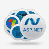 Reasons For Going With Asp Hosting Of My windows hosting | windows Hosting | Scoop.it